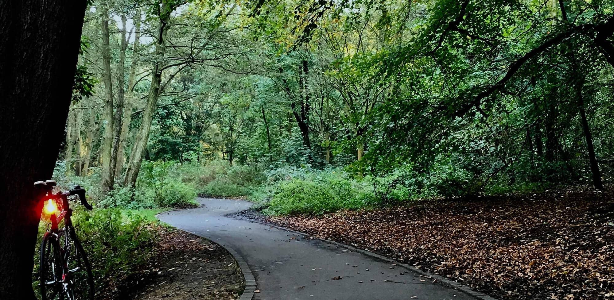 empty-path-4