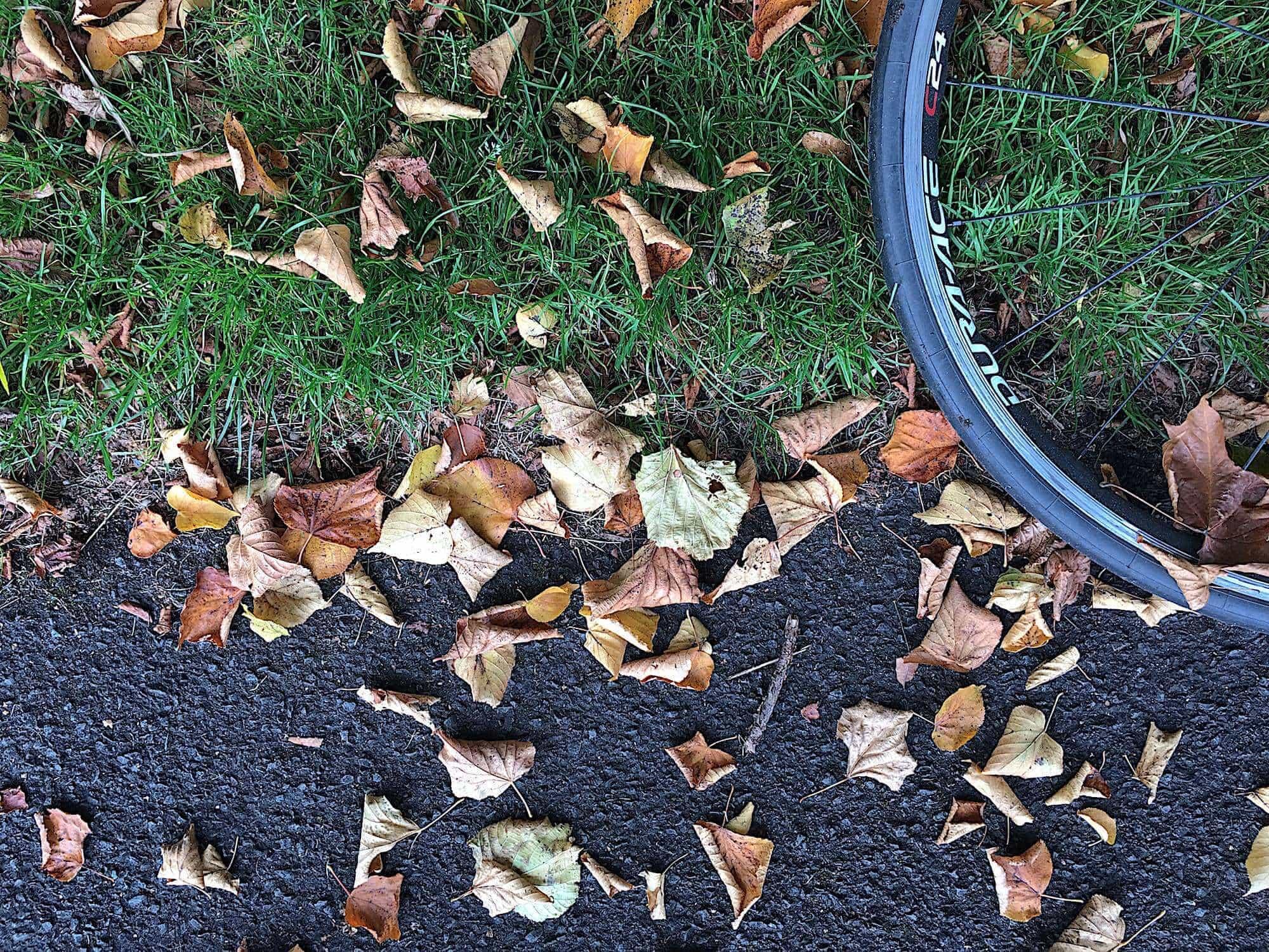 wheel-road-leaves